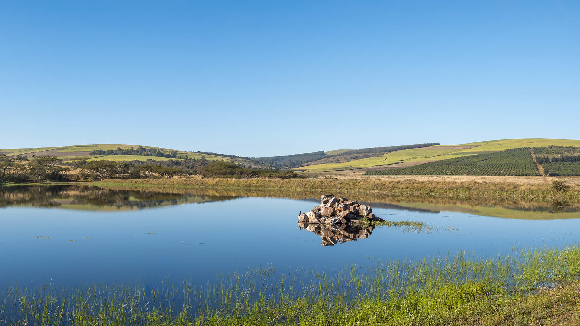 fountain hill reserve umgeni-river-farming-community-accommodation-conservation-wartburg-kwazulu-natal